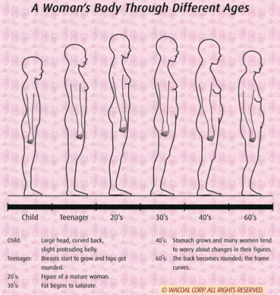 womens-body-through-different-ages.png